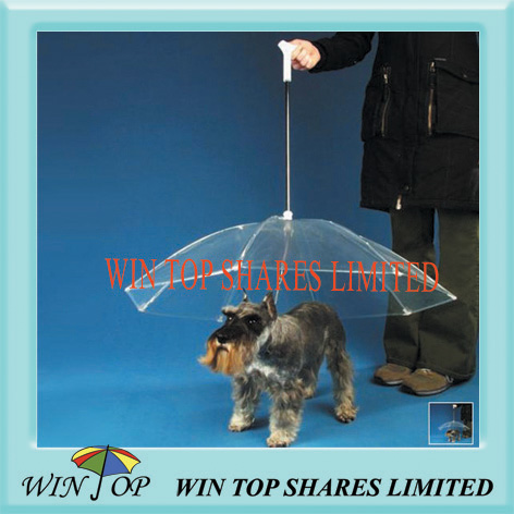 Stock dog umbrella available